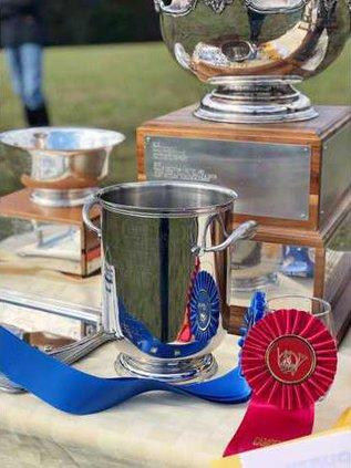 Trophys Web