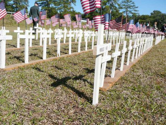 Veterans Day photo -Web