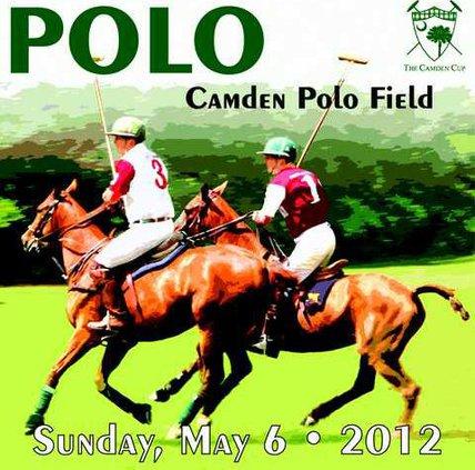 2012 polo graphic