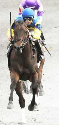 CIAO BELLA LUNA The Beaumont Presented by Keeneland Select Gr II - 04-14-13 KEE - HeadOn