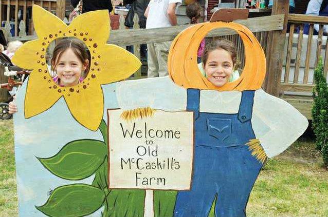 Daisy photo cutouts WEB