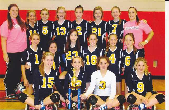 L-EMS volleyball