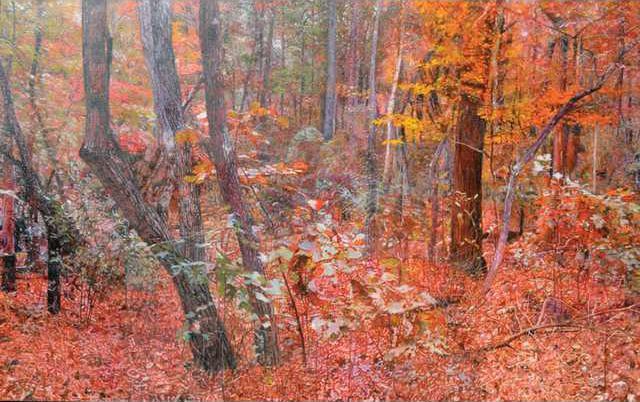 Landscape 1 PP WEB