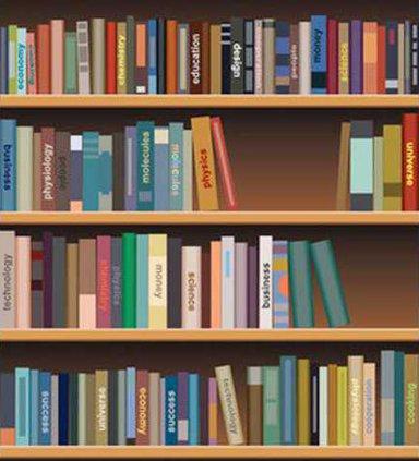 bookshelf 2 Web