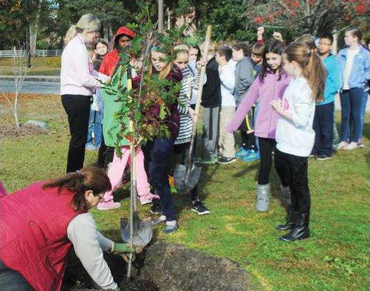 Arbor Day Camden Elementary