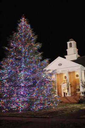 Christmas Tree for Web