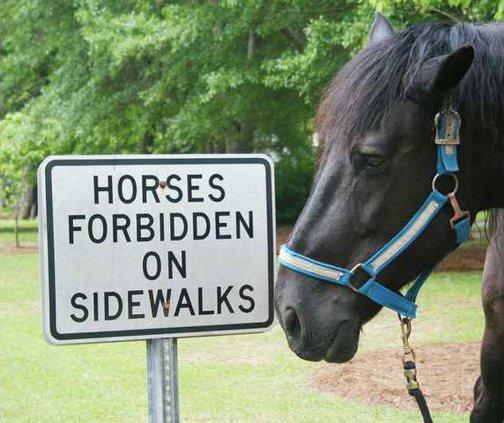 Horse Sign Photo