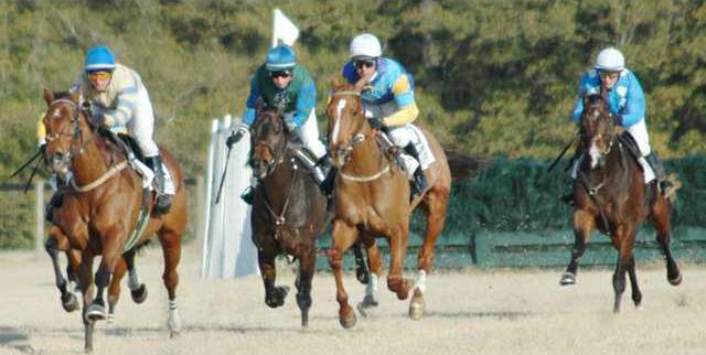 Racing pic.JPG