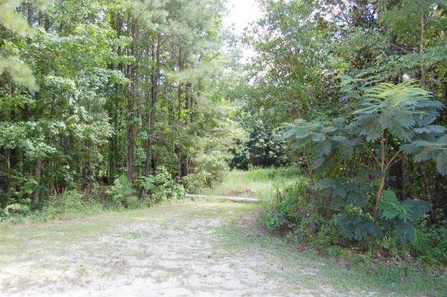 Sweet Gum Trail