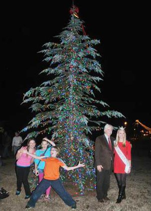 Camden Christmas Tree
