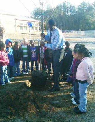 Jackson Arbor Day for Web