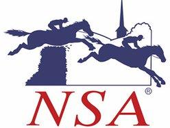 NSA logo web