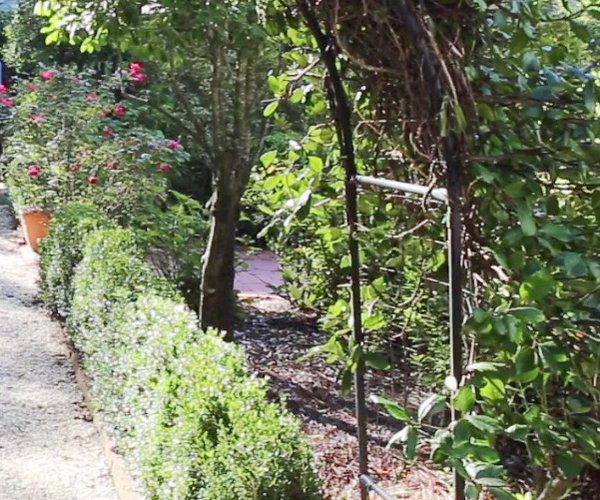 Van Horn Garden