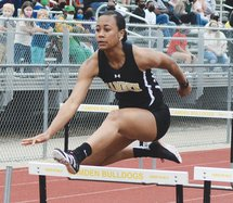 hurdles web