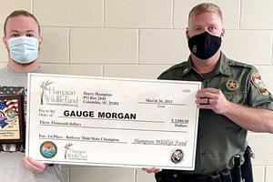 Gauge Morgan